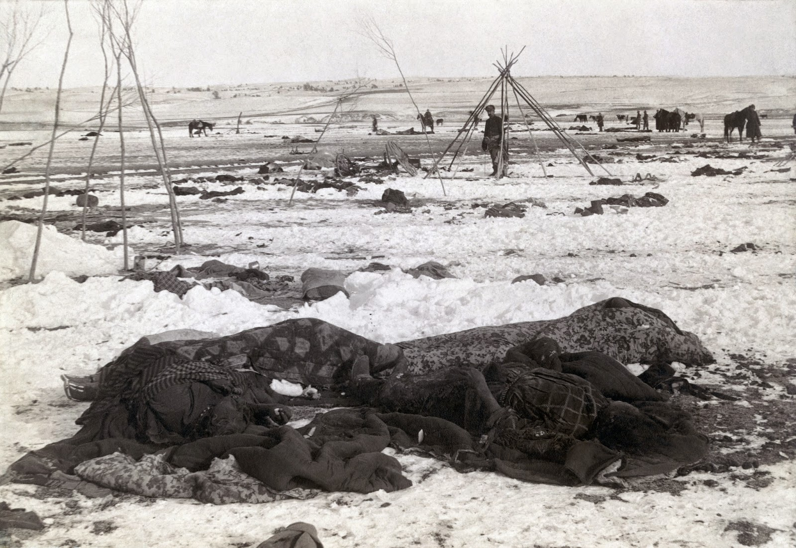 wounded knee single girls Nearly half of the sioux killed at the 1890 wounded knee massacre were women and children wounded knee: conflict breaks out  on december 29,.
